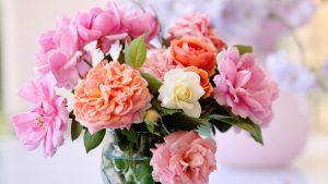 Các loại hoa cắm chung với hoa hồng - hoa mẫu đơn
