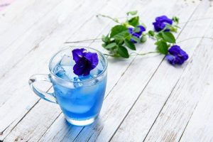 Tác dụng của hoa đậu biếc với sức khoẻ và sắc đẹp