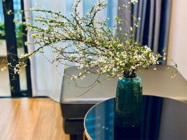 các loại hoa cắm lâu tàn nhất - hoa thanh liễu